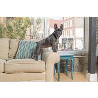 PetSafe® PetSafe®  Lite Rechargeable Bark Control