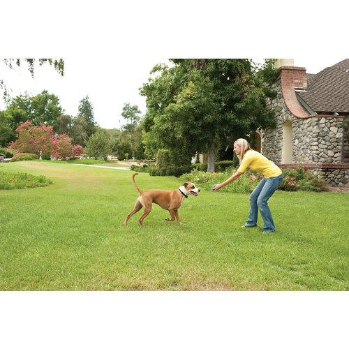 PetSafe® PetSafe® Stay + Play Wireless Fence