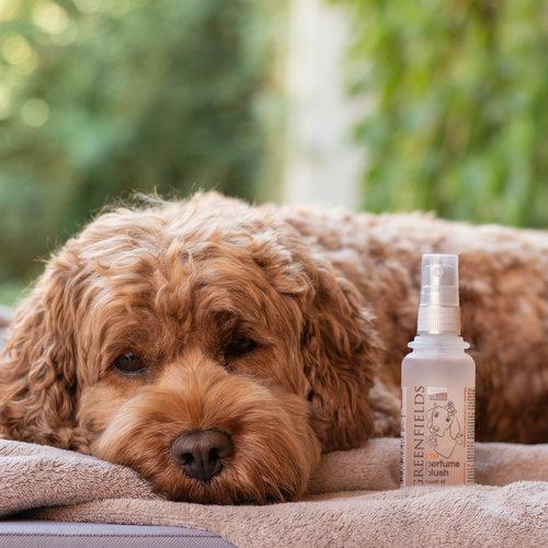 Greenfields Greenfields Hundeparfüm Blush 75 ml