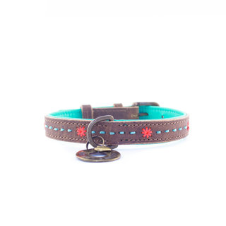 DWAM Joplin Collar