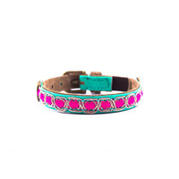 Dog With A Mission DWAM Coco Cat Collar