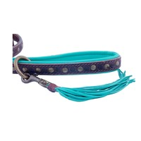 Dog With A Mission DWAM Jimmy Leash