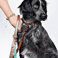 Dog With A Mission DWAM Joe Leather Hundeleine