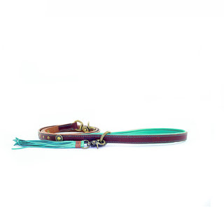 DWAM Joe Leather Leash