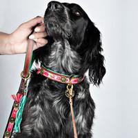 Dog With A Mission DWAM Boho Hundeleine