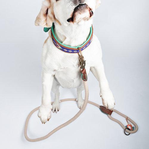 Dog With A Mission DWAM Hundeleine