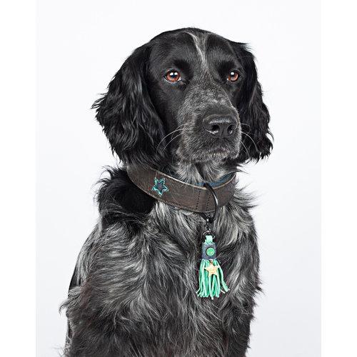 Dog With A Mission DWAM Boy Halsband