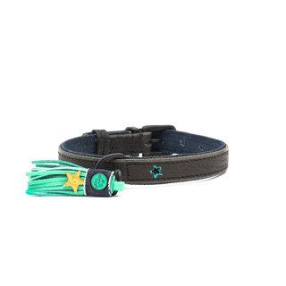 DWAM Boy Hundehalsband