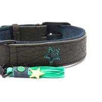Dog With A Mission DWAM Boy Hundehalsband