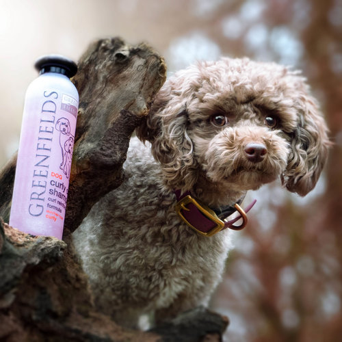 Greenfields Greenfields Hundeshampoo Lockiges Fell 250 ml