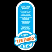 Nylabone Nylabone Puppy Teething Keys Bacon