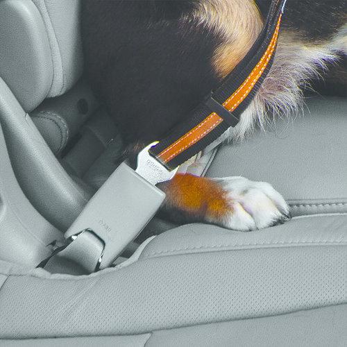 Kurgo Kurgo - Direct to Seatbelt Swivel Tether - Blauw