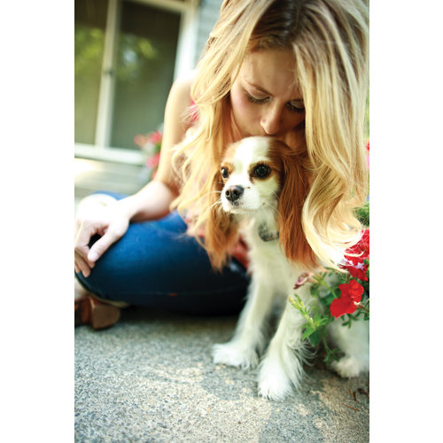 PetSafe® Petsafe® Luxus Umzäunungssystem für kleine Hunde