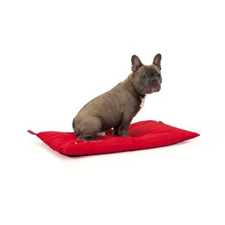 51DN - Storm - Bench Cushion - Red