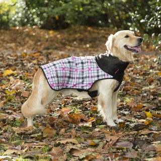 Scruffs Thermal Dog Coat - Sale