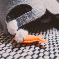 Beco Beco Plush Catnip Toy - Fish