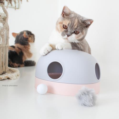 MAKESURE MS! Hola Kattenspeelgoed