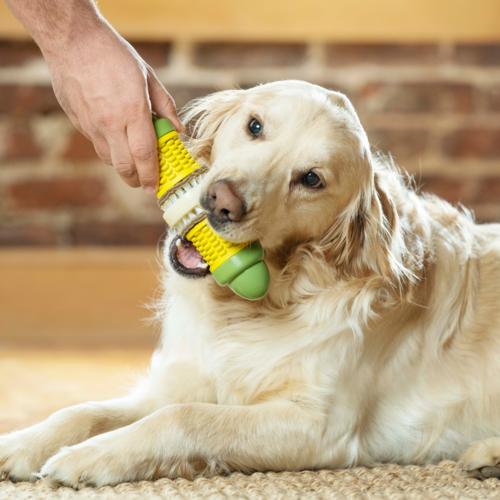 PetSafe® PetSafe® Busy Buddy® Cravin' Corncob
