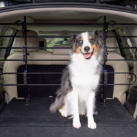 PetSafe® Happy Ride Metal Dog Barrier
