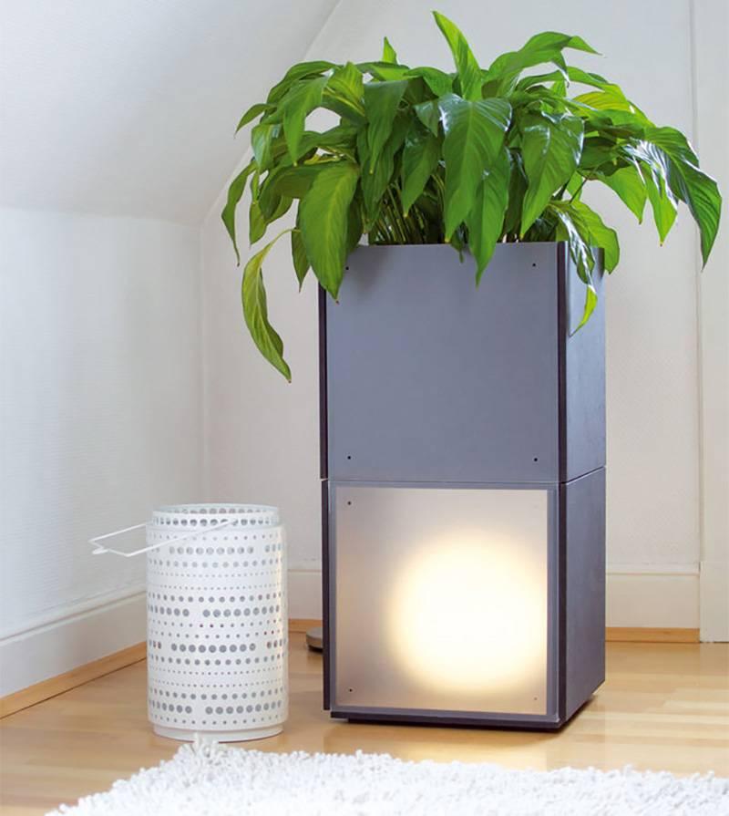 2er Container für Pflanzen