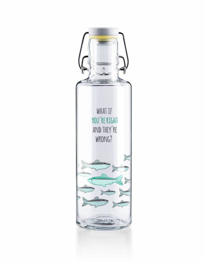 "soulbottles Glasflasche 0,6l ""You're right"""