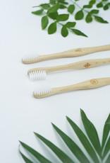 LiebWerk Zahnbürste aus Schweizer Buchenholz - Palme