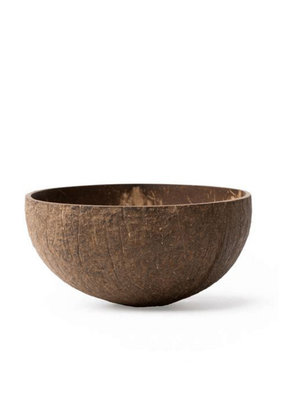 Coconut Bowls Coconut Bowl - Raw