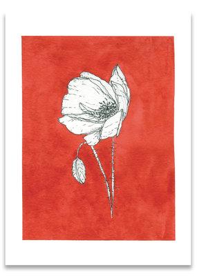 """paper lions studio Postkarte """"Mohn rot"""""""