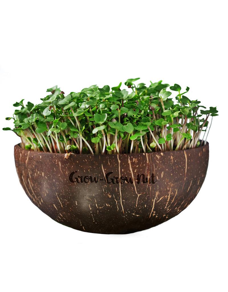 Grow-Grow Nut Microgreen Starter Set