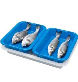 Drip tray 400 x 300, blue