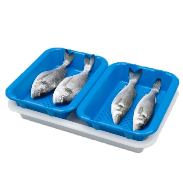 Scaritech Drip tray 400 x 300, blue