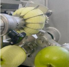 Apfelschäler ASETSM-E