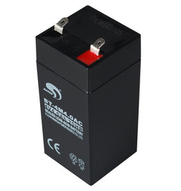 Battery for SW-II scale