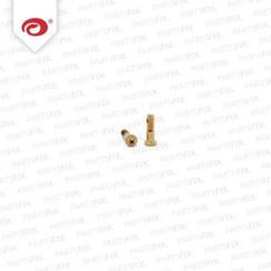 iPhone 6S bottom screws gold