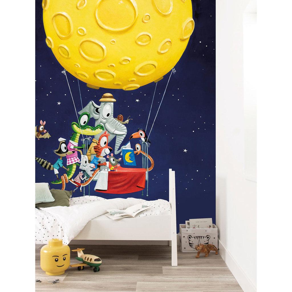 Kek Amsterdam Kinderbehang 'Hot Air Balloon' - Leo Timmers  - 5 banen