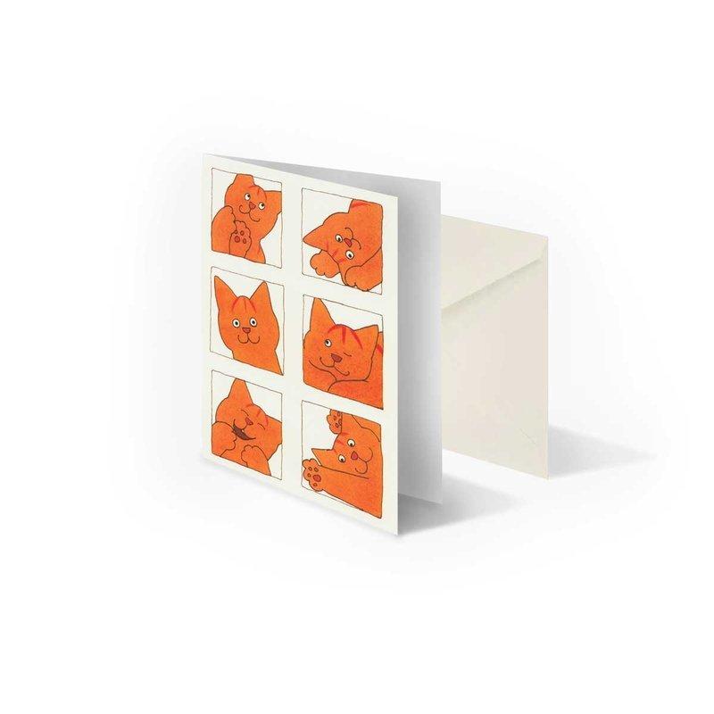 Bekking & Blitz Dikkie Dik 'Pasfoto's' gevouwen ansichtkaart