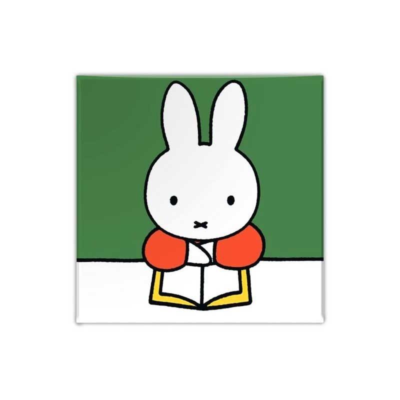 Nijntje Nijntje magneet, Nijntje leest een boek