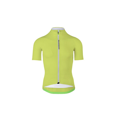 Q36.5 Jersey short sleeve Lady L1 Pinstripe