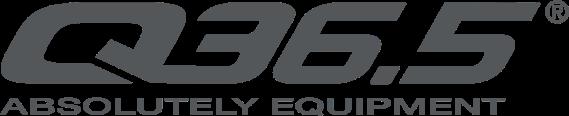 Q365 logo