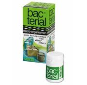 Velda Velda Bacterial Filterstart - 20 ml
