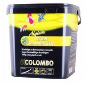 Colombo Colombo Algisin Tegen Draadalgen - 5.000 ml