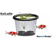 Dupond Design KoiLelie medium