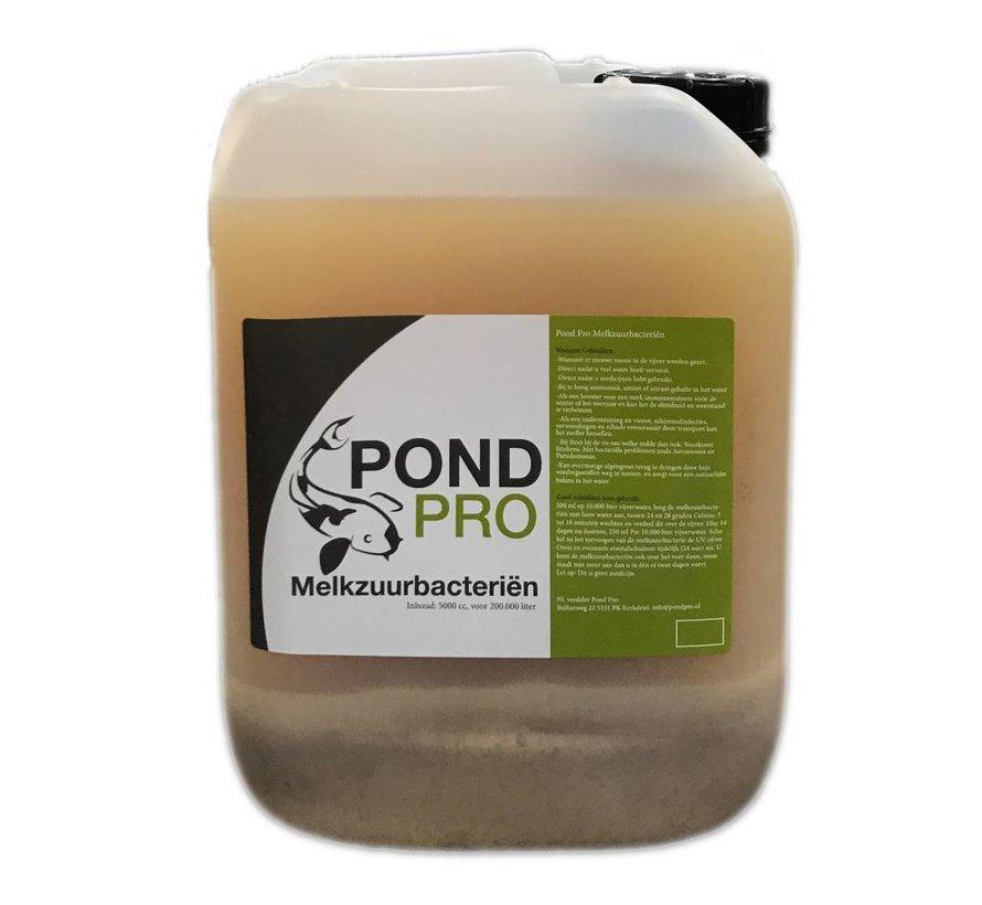 Pond Pro Melkzuurbacteriën 5 liter