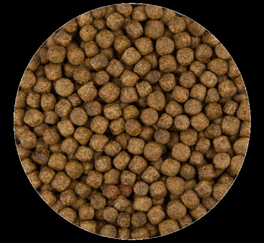 Pond Pellet Koivoer 6 mm 10 kg