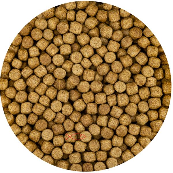 Wheat Germ 6mm (15 Kilo Zak) | Vivani