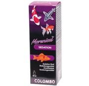 Colombo Colombo verdoving 20ml