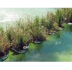 Drijvende Planteneilanden