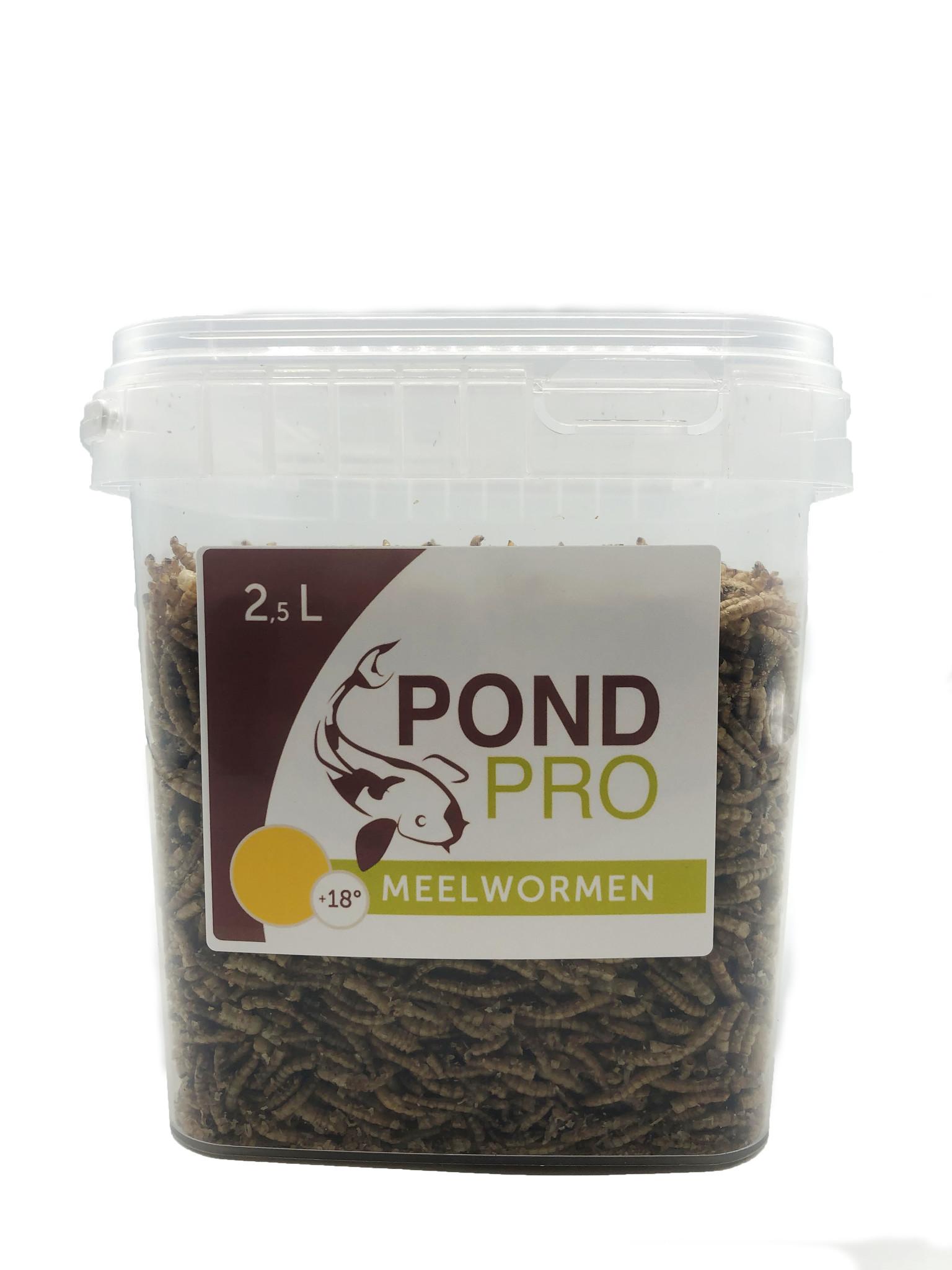 Pond Pro Pond Pro Meelwormen - 2,5 Liter Emmer kopen