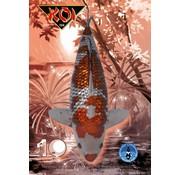 NVN NVN Koi Magazine 155