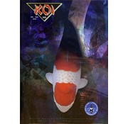 NVN NVN Koi Magazine 152